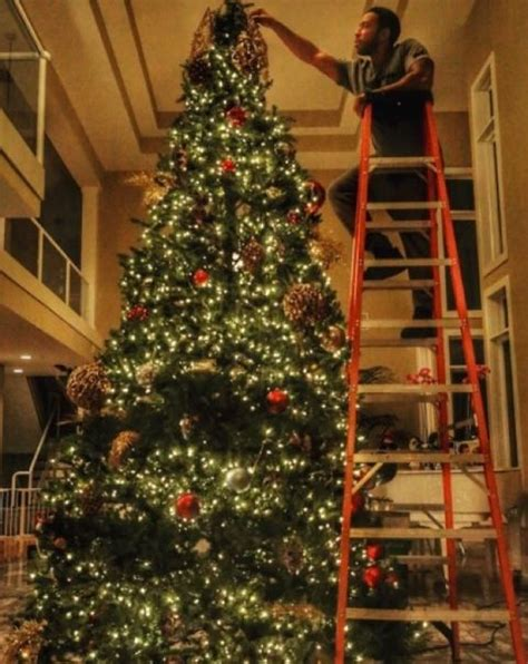 celebrities sky high christmas trees photo 29 tmz com