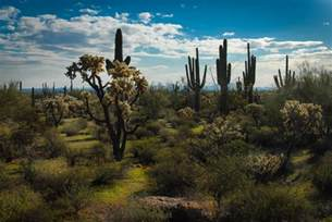Landscape Photos Arizona Arizona Desert Landscape Free Stock Photo Domain