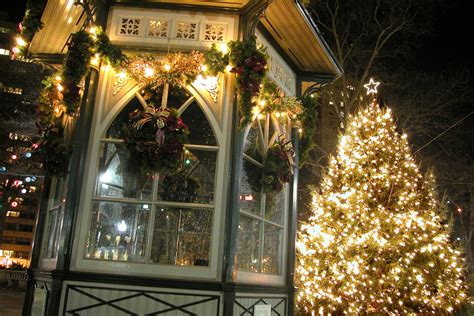 a guide to tree lighting celebrations in philadelphia and