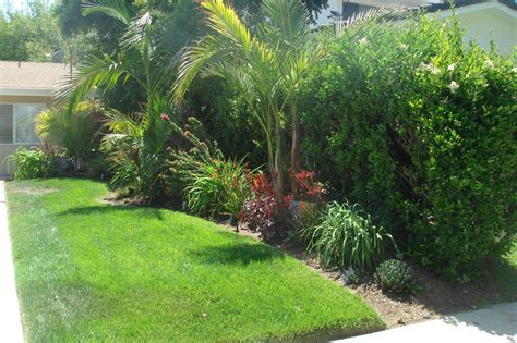 tropical backyard landscaping front yard tropical landscaping ideas www pixshark com