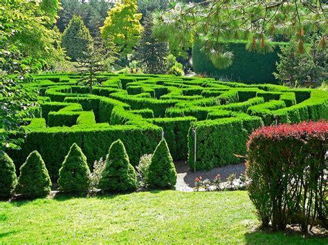 Garden City Ny Wiki File Vandusen Botanical Garden Maze Jpg Wikimedia Commons