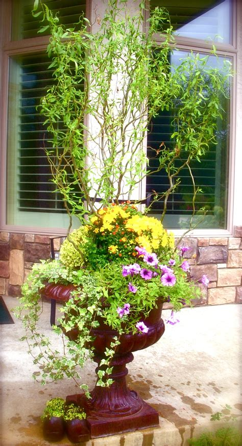 spring garden ideas 17 best images about spring containers on pinterest