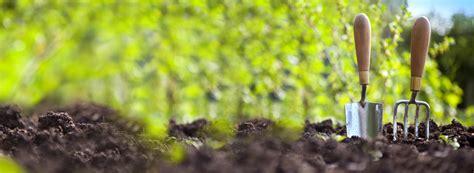 imagenes graciosas de jardineros jardiner 237 a mundojardineria com