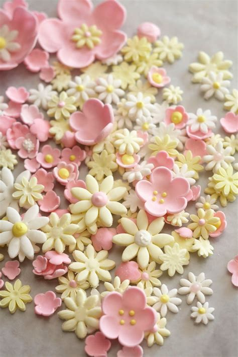 Plugger Four Petal Cetakan Fondant best 25 sugar paste flowers ideas on fondant flowers fondant tutorial and