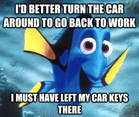 Boston Car Keys Meme - 20 very funny swimming images