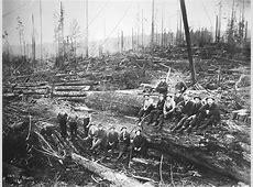 The Florence Logging Camp near Sunday Lake, Stanwood ... Logging Camp History