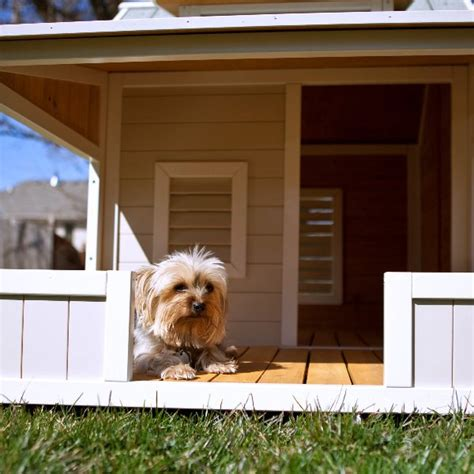 outback dog house savannah dog house by precision outback home design garden architecture blog magazine