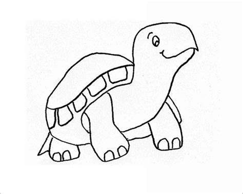 sea turtle template printable pictures to pin on pinterest