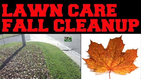 fall cleanup landscaping lawn care fall cleanup