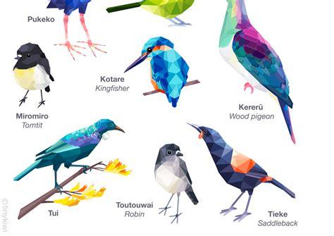 poster design nz new zealand birds poster new zealand art bird poster