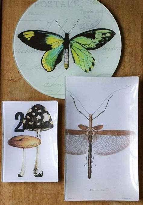 Best Decoupage Medium - 21 best images about decoupage plates on