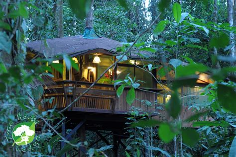 tree house insurance the ten top tree house hotels travelnerd