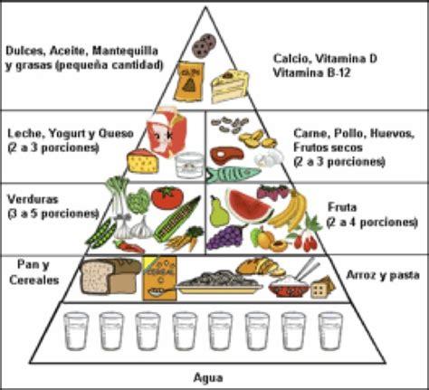 piramide de alimentos camino calvo pir 225 mide de los alimentos