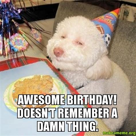 Awesome Birthday Memes - awesome birthday doesn t remember a damn thing make