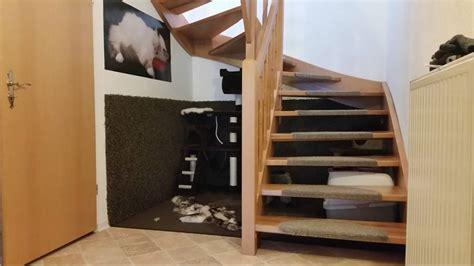 wohnung katzengerecht diy katzenparadies aus ungenutztem wohnraum katzenblog