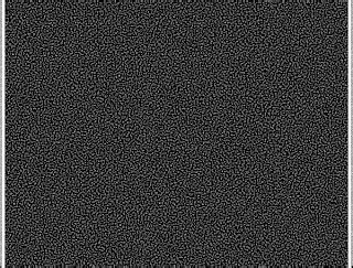 pattern molecolari associati ai patogeni progetto omegna maggio 2009