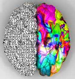 creativity the human brain in the age of innovation books driving creativity in the age of the math