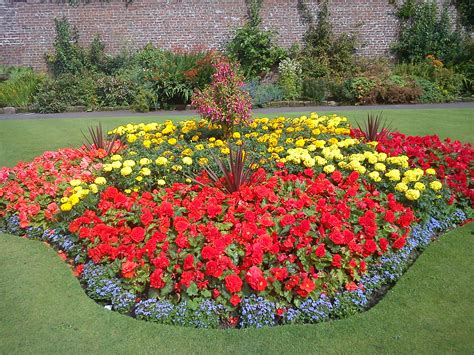 Sun Flower Beds by The Gallery For Gt Flower Garden Designs For Sun