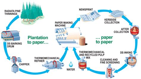 The Process Of Paper - paper recycling process diagram recycling in pearland
