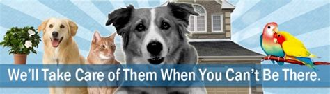 house dog sitter image gallery house and pet sitting