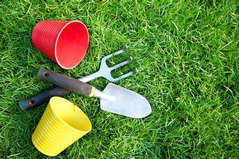 ready for spring get your lawn ready for spring weed a way lawn care