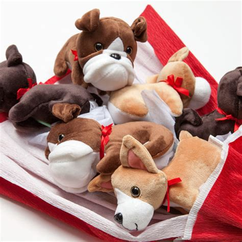 puppy bouquet say you or him with a bouquet of puppies petslady