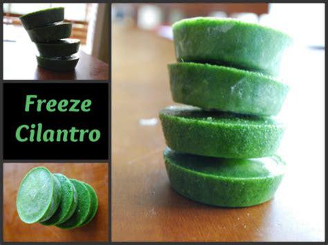 how to freeze cilantro consumerqueen com oklahoma s coupon queen