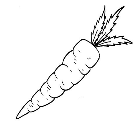 carrot black and white outline coloring page free