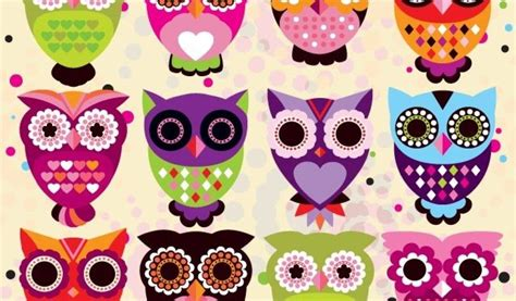 colorful owl wallpaper colorful cute owl wallpapers download wallpaper