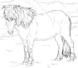 connemara pony coloring pages ausmalbild islandpferd ausmalbilder kostenlos zum