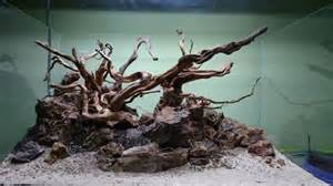 driftwood aquascape beautiful aquarium design with driftwood and natural rock