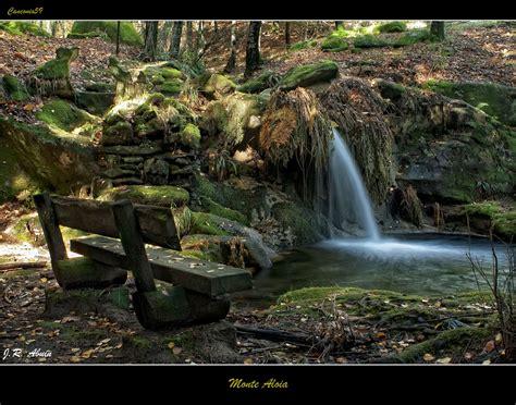 monte aloia nature park wallpaper monte homeactive us canconio59 noviembre 2011