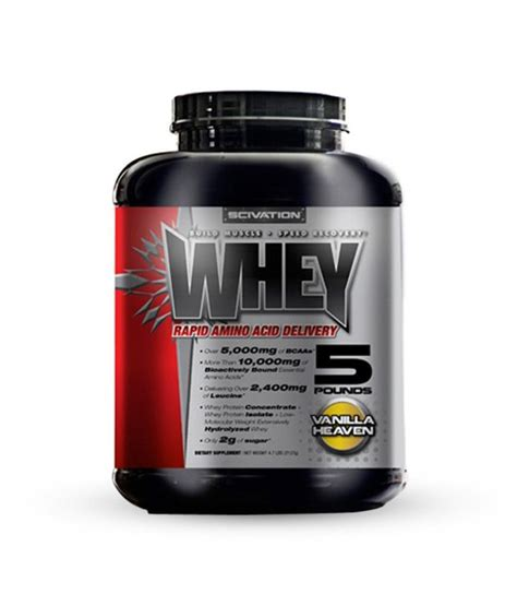 protein x price scivation whey protein chocolate 5 lbs buy scivation
