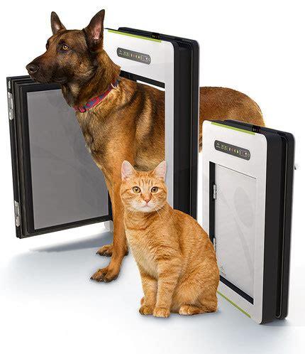 porte automatique pour chien porte automatique odomestic