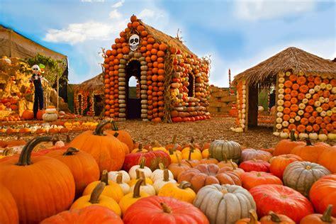 pumpkin patches  los angeles  halloween fun
