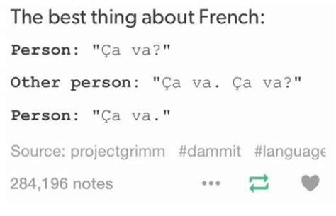 French Language Meme - the best thing about french person ca va other person ca