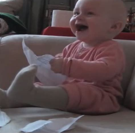 Rejection Letter Baby Laughing Baby React To Ripping Rejection Letter