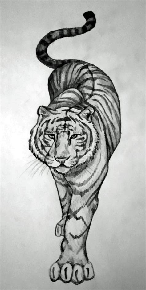 tigers tattoos 1000 ideas about tiger on tiger