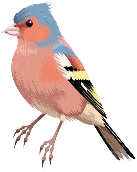 birds clipart bird png clip best web clipart