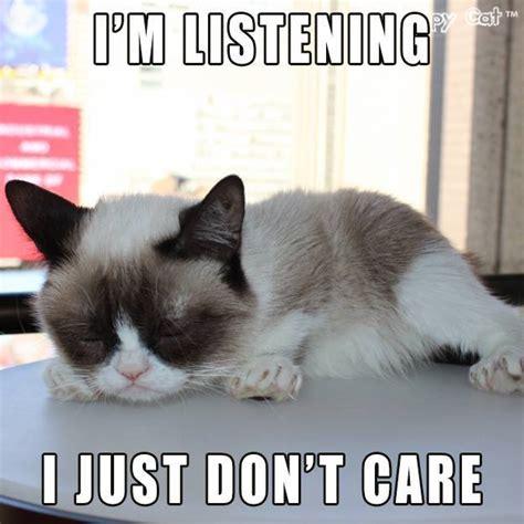 Memes Grumpy Cat - 10 new grumpy cat memes