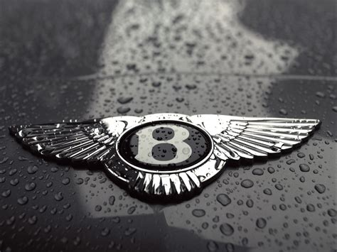 bentley motors logo bentley logo auto cars concept