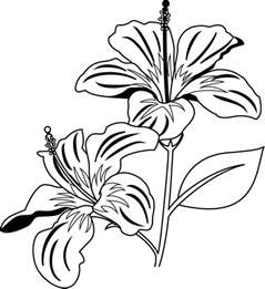 Galerry clipart flower coloring page