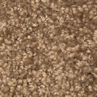 pet stain resistant area rugs mohawk ideal match carpet stain soil pet urine resistant