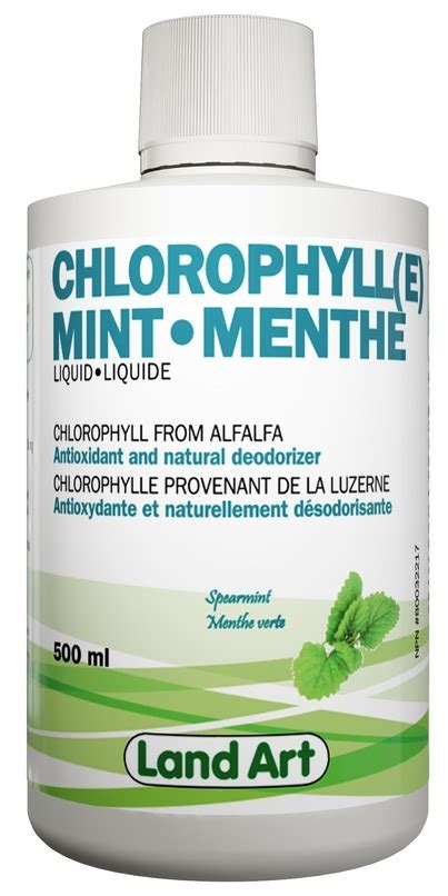 Minuman Pelangsing Chlorophyll Mint Powder buy land chlorophyll mint liquid at well ca free shipping 35 in canada