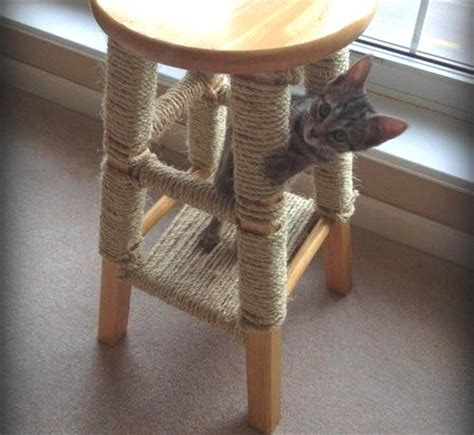 Cat Has Stool by Bar Stool Scratching Post Petdiys