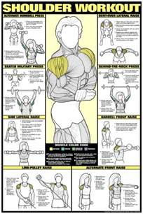 shoulder workouts workouts powder protein