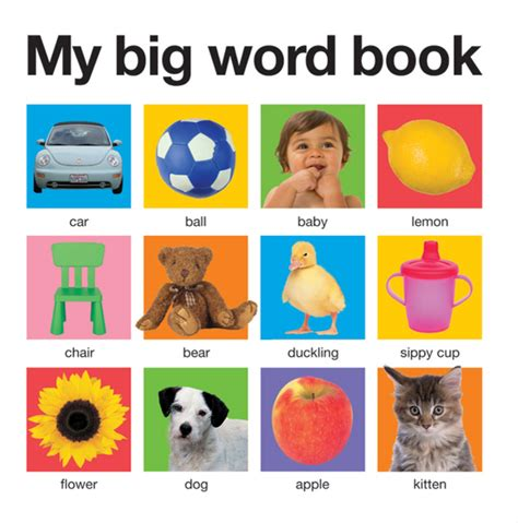 words and pictures book my big word book casebound roger priddy macmillan