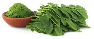 Do the moringa amazing wellness magazine the vitamin shoppe