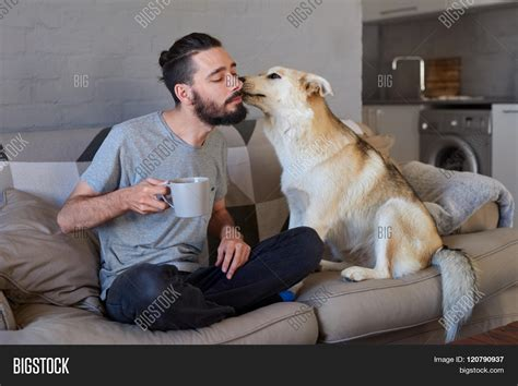 my dog licks the couch pet owner receiving a kiss lick from his pet dog on the