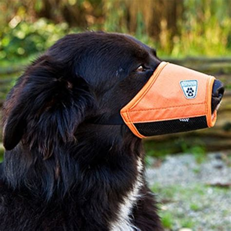 soft muzzle soft fit muzzle by canine friendly orange at baxterboo